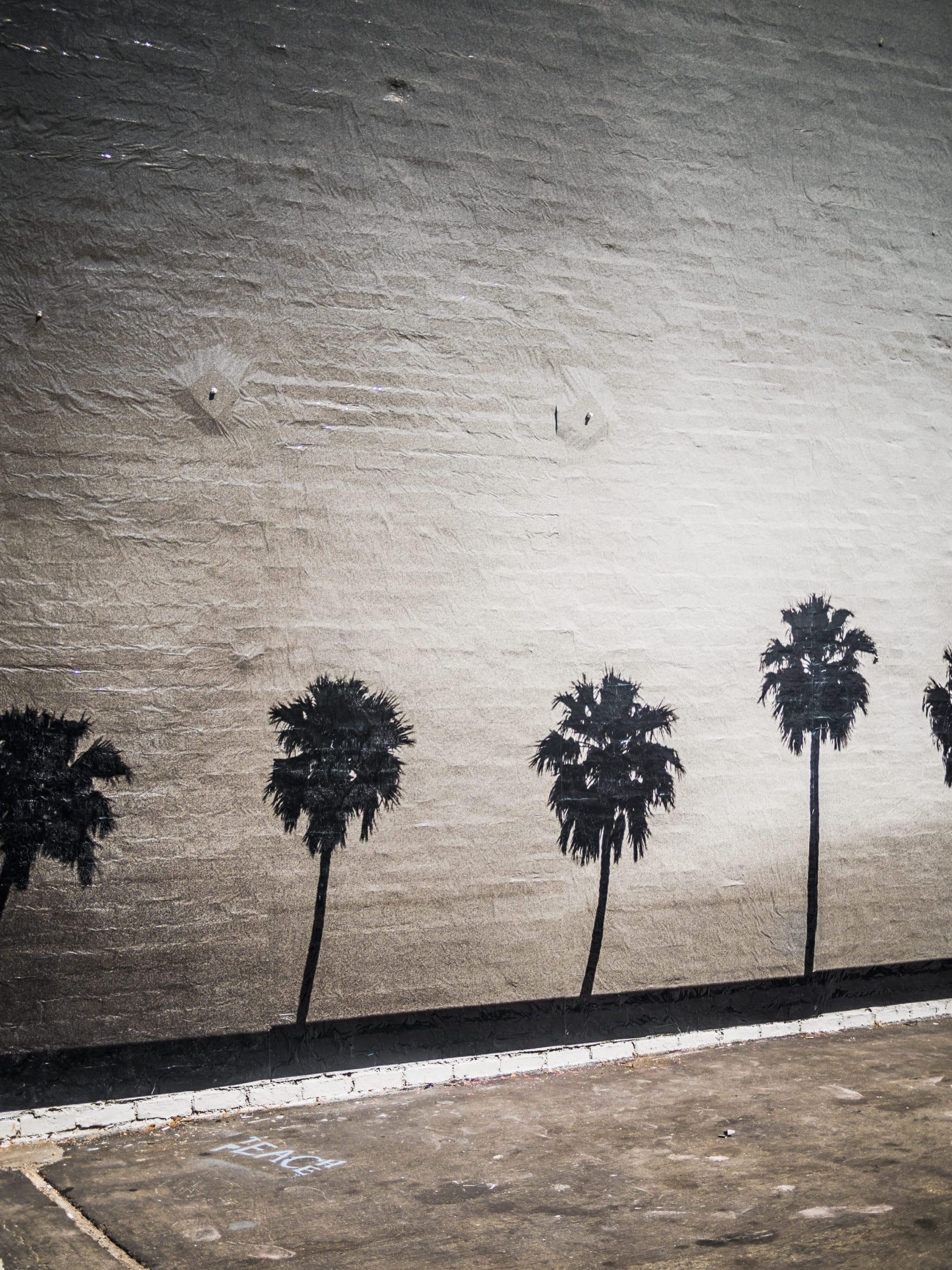 Los Angeles: Venice und ein Besuch bei Matthew Kenney