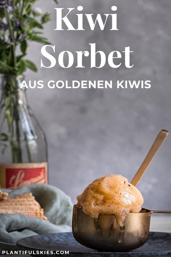 Kiwi Sorbet selber machen